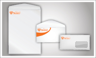 Custom Printed Catalog & Booklet Envelopes (sku: 920)